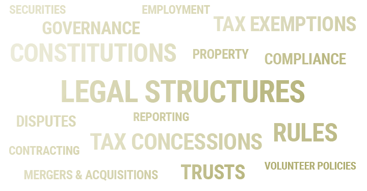 Wordcloud with services for not-for-profits, with services sized in order of popularity